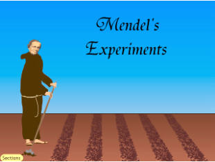 The Experiments Of Gregor Mendel Answer Key